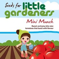 Little Gardeners - Mini Munch Tomatoes
