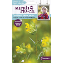 Wildflower Yellow Rattle