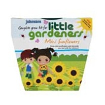 Little Gardeners - Mini Sunflowers