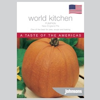 Pumpkin New England Pie