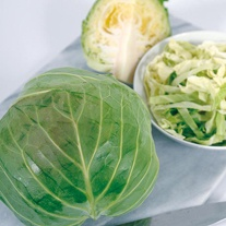 Cabbage Cabbice F1