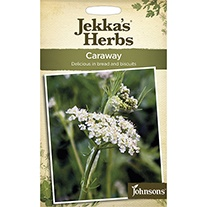 Jekka's Herbs Caraway