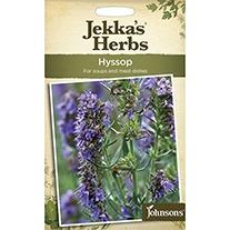 Jekka's Herbs Hyssop