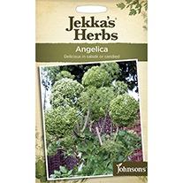 Jekka's Herbs Angelica