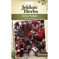 Jekka's Herbs  Shiso Purple