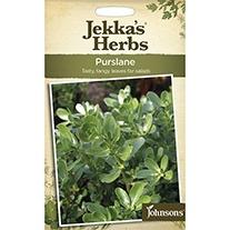 Jekka's Herbs Purslane