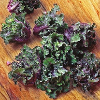 Kalettes® Mixed F1