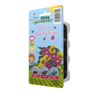 Little Gardeners - Cheery Nasturtiums Starter Kit