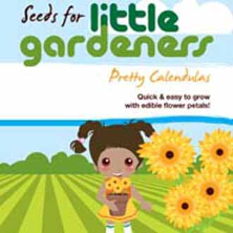 Little Gardeners - Pretty Calendulas