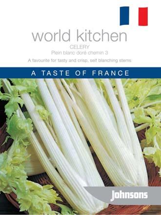Celery Plein blanc dore chemin3