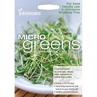 Microgreens Coriander