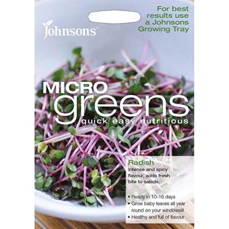 Microgreens Radish
