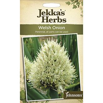 Jekka's Herbs Welsh Onion