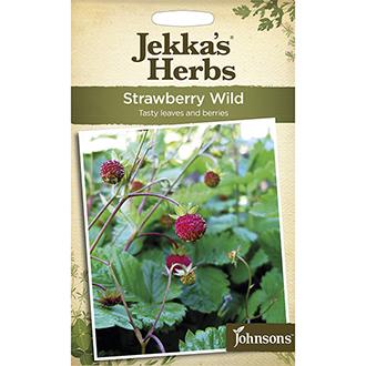 Jekka's Herbs Strawberry Wild