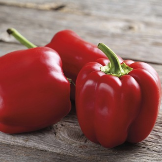 Pepper (Sweet) Asti Red (ORGANIC)