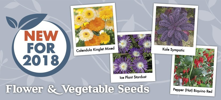 New Seeds For 2018